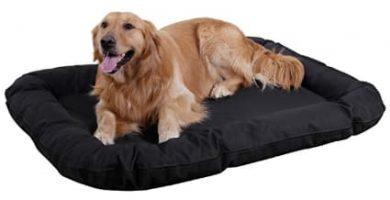 camas para perros impermeables